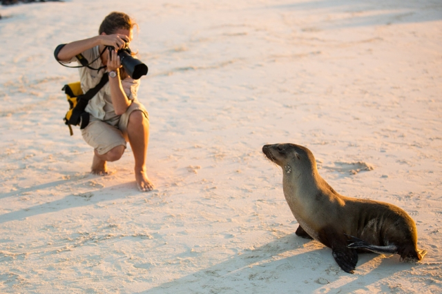 Krista photographing a sea lion in the Galapagos Islands. Photo by Naturalist and Photo Instructor Greg Aranea.