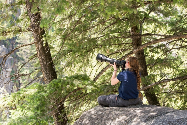 Krista-Rossow-Yellowstone-student-photographing