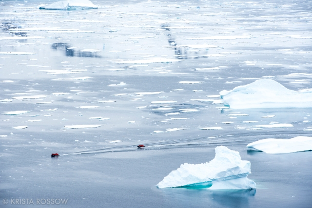 krista-rossow-antarctica-photography-zodiacs