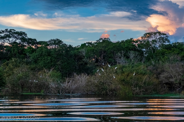 11-krista-rossow-peru-amazon-sunset