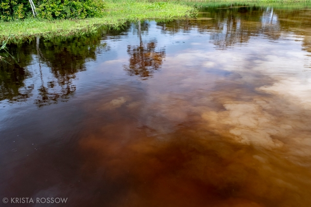 13-krista-rossow-peru-amazon-confluence